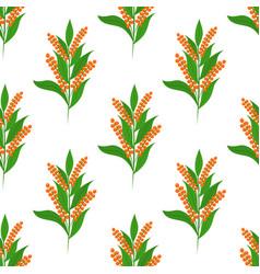 quinoa seamless patterncartoon flat style vector image