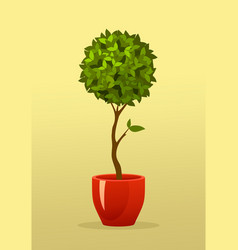 tree in a pot vector image vector image