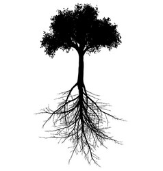 tree with roots silhouette vector image vector image