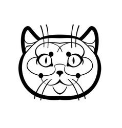 british shorthair cute vector image