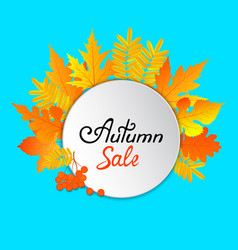 autumn sale hand painted text frame with yellow vector image