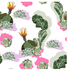 high detail cacti seamless tropical pattern cactu vector image