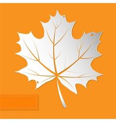 maple leaf orange background vector image