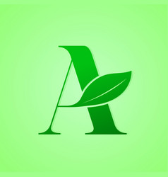 nature lettering for green ecology logo vector image