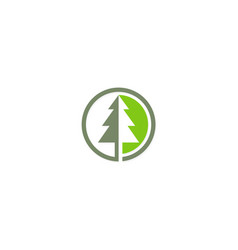 pine tree icon logo vector image