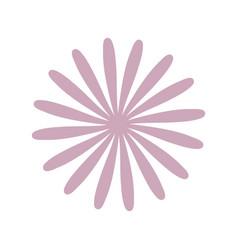 Star anise flower decoration vector