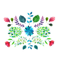 flowers and leaves watercolor vector image vector image