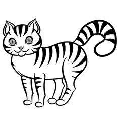 isolated black and white stripped cat vector image vector image