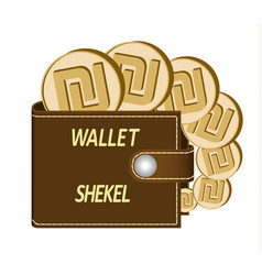 brown wallet with shekel coins vector image