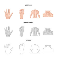 Isolated object of human and part sign set of vector