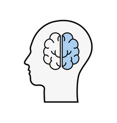 Line silhouette head with brain inside vector