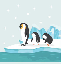 Penguin family in north pole arctic vector