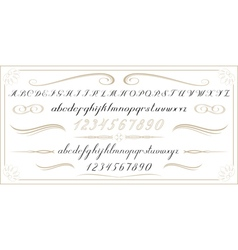 ALPHABET Old handwritten letters and numbers EPS10 vector image vector image