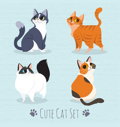 Cats breed set vector