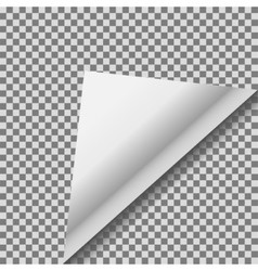Folded up white foil blank note paper vector image