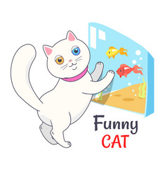 funny white cat looking aquarium with fish vector image