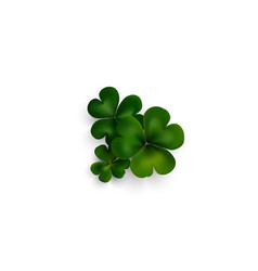 Green clovers on white with shadow decoration for vector image