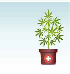 Medical marijuana or cannabis in pot vector