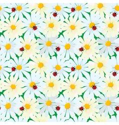 Seamless pattern with chamomile flowers and ladybi vector image
