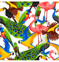 seamless pattern with tropical exotic birds vector image