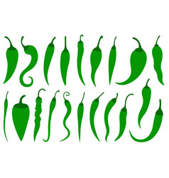 set of different green hot chili peppers vector image