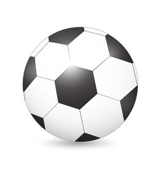 soccer football ball on white vector image