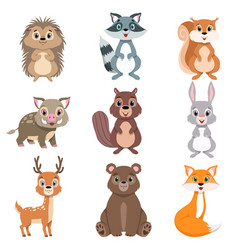 Cute forest animals and birds set squirrel hare vector