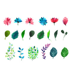 Flowers and leaves watercolor vector