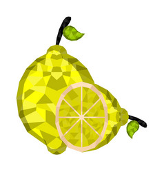 isolated geometric lemon cut low poly vector image