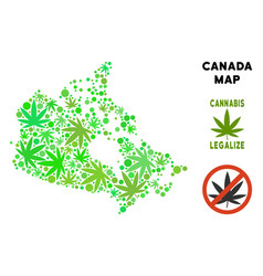 Royalty free marijuana leaves composition canada vector