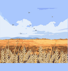 wheat field background beautiful fall vector image