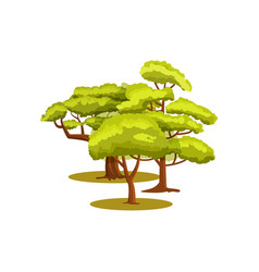 green forest isolated icon vector image