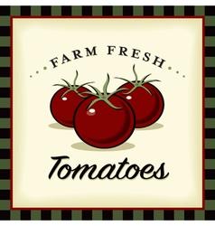 Farm Fresh Tomatoes vector image vector image