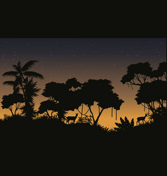 Silhouette of rain forest scenery vector