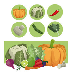Vegetables fresh raw ingredients vector
