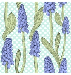 Seamless pattern with grape hyacinth or muskari vector image vector image