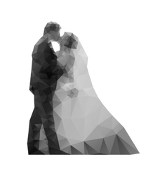 Wedding Kiss the bride and groom vector image