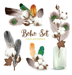 Cotton bolls feathers boho set vector