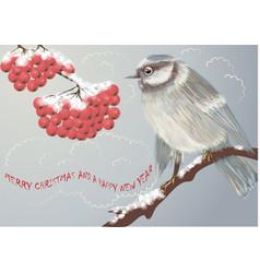 bird and winter berries vector image