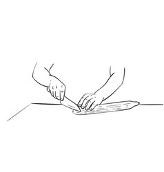 close up hands cutting cucumber with knife vector image