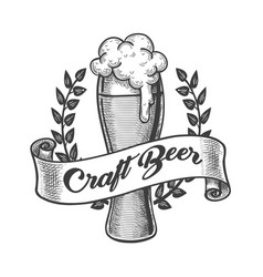 craft beer emblem drawn in engraving style vector image
