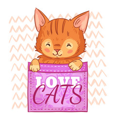cute cat in pocket love cats pockets kitten and vector image