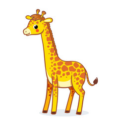 Giraffe stands on a white background african vector