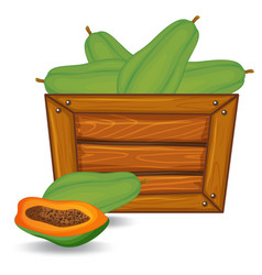 Papaya on wooden banner vector