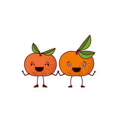 White background with pair of tangerine fruits vector