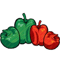 Capsicums vector image vector image