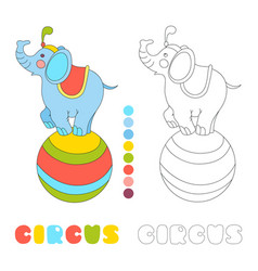 circus elephant on the big ball i coloring book vector image