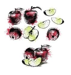Watercolor Hand drawn set of apples sketch vector image vector image