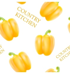 Orange bell pepper vector