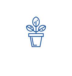 plant pot line icon concept plant pot flat vector image